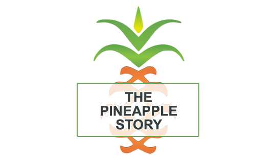 The Pineapple Story on Hospitality